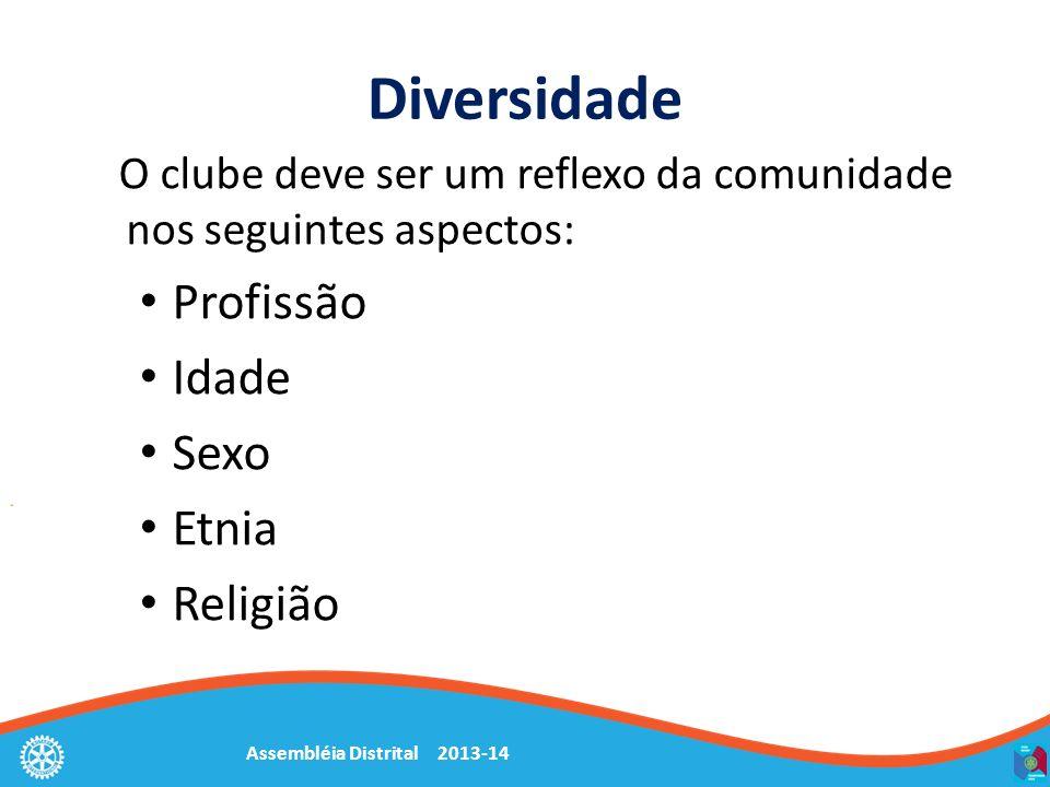 Assembléia Distrital 2013-14 Diversidade O clube deve ser um reflexo da comunidade nos seguintes aspectos: Profissão Idade Sexo Etnia Religião
