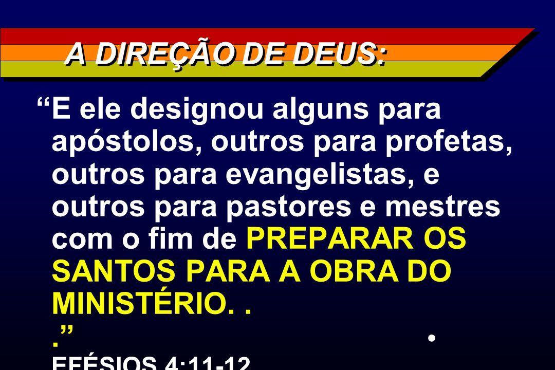 A DIREÇÃO DE DEUS: E ele designou alguns para apóstolos, outros para profetas, outros para evangelistas, e outros para pastores e mestres com o fim de