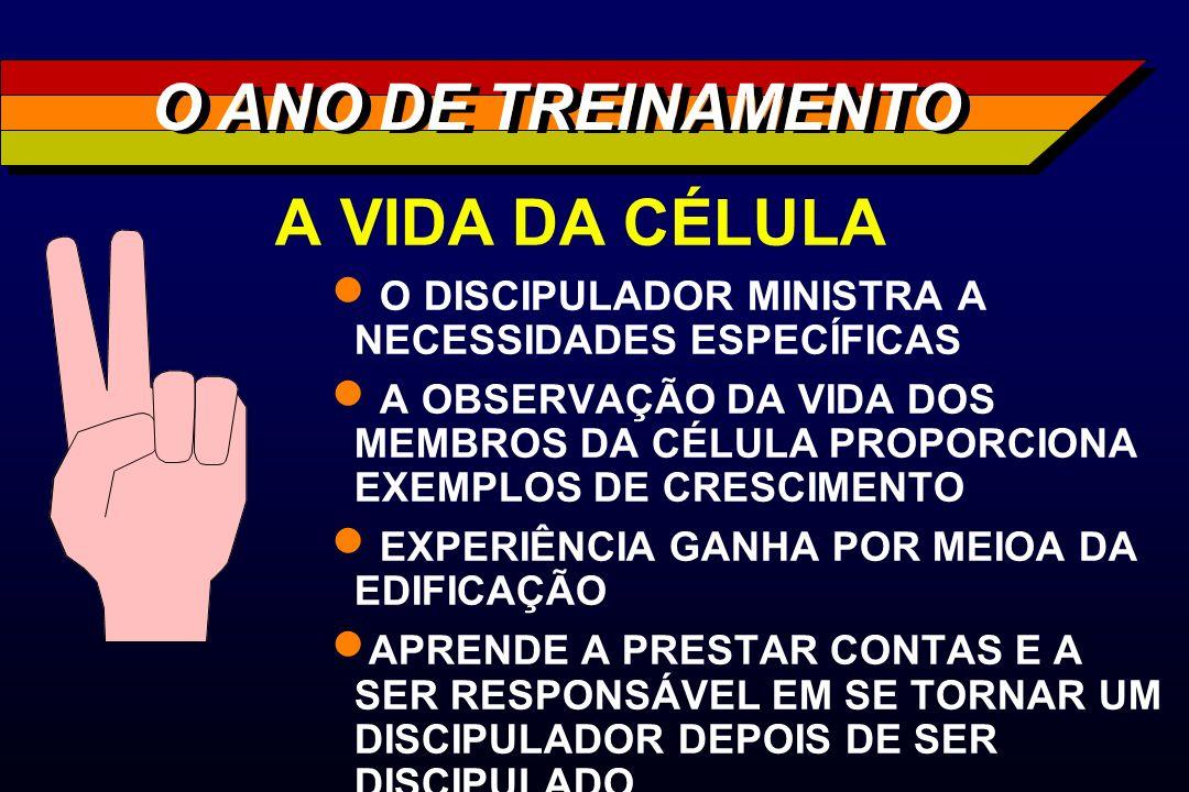 A VIDA DA CÉLULA O DISCIPULADOR MINISTRA A NECESSIDADES ESPECÍFICAS A OBSERVAÇÃO DA VIDA DOS MEMBROS DA CÉLULA PROPORCIONA EXEMPLOS DE CRESCIMENTO EXP