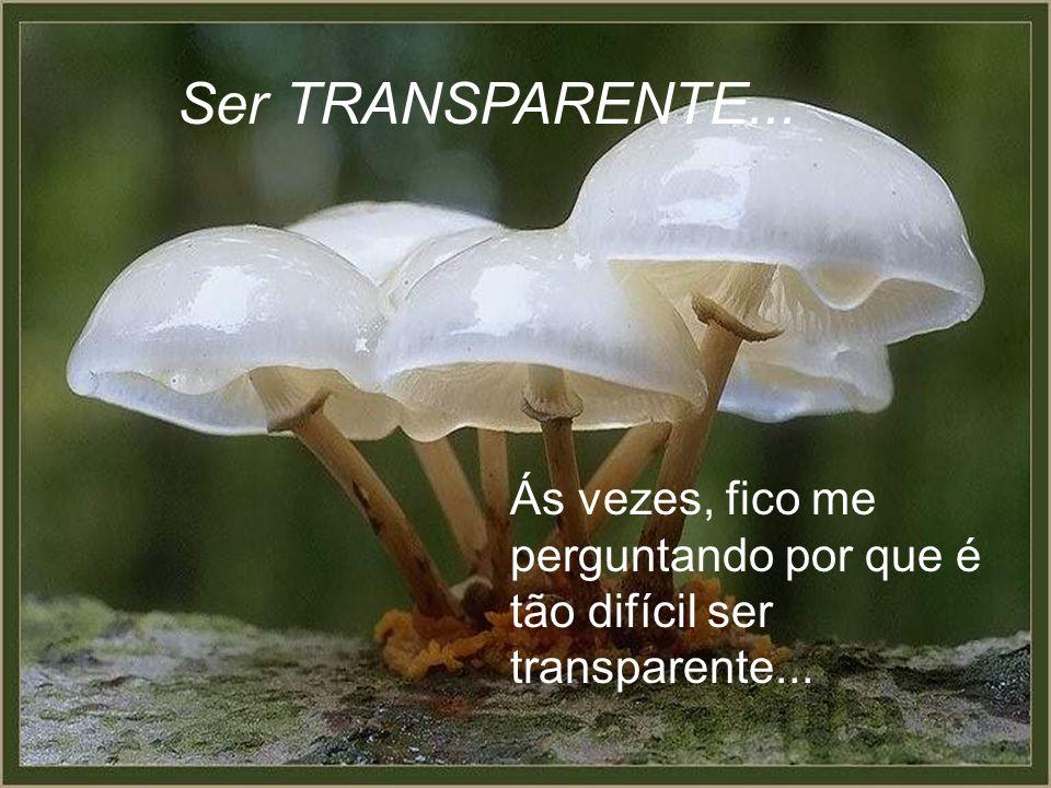 Ás vezes, fico me perguntando por que é tão difícil ser transparente... Ser TRANSPARENTE...