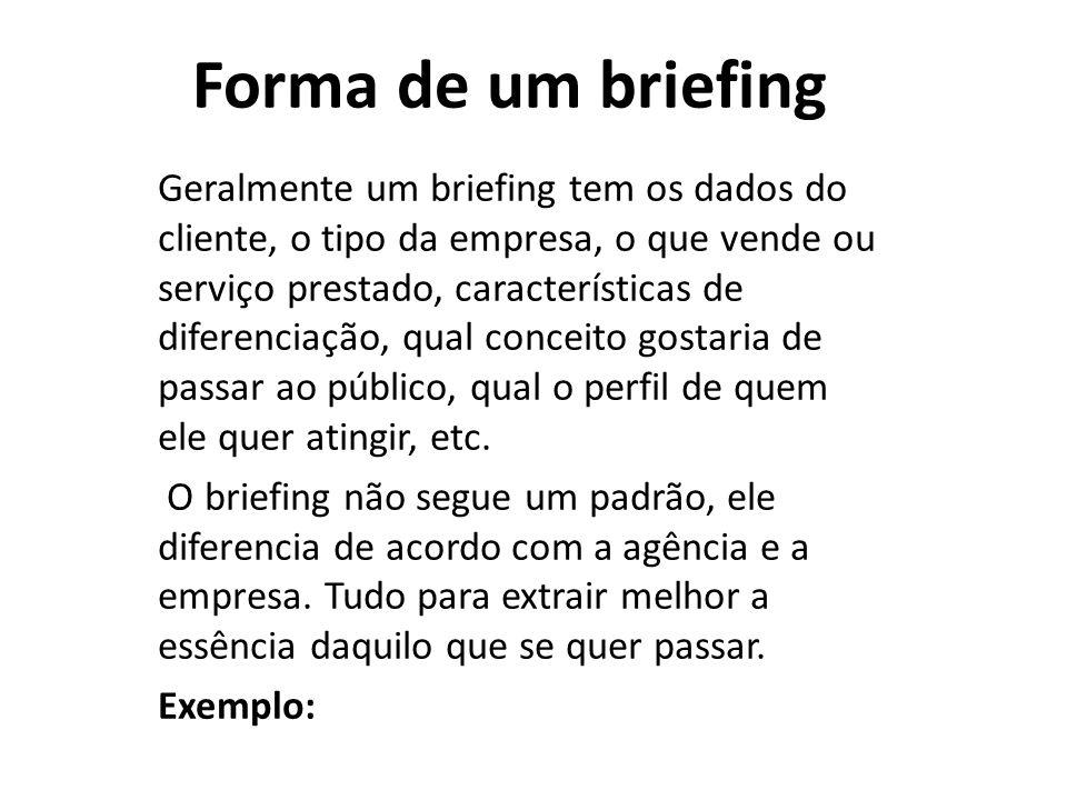 Geralmente um briefing tem os dados do cliente, o tipo da empresa, o que vende ou serviço prestado, características de diferenciação, qual conceito go