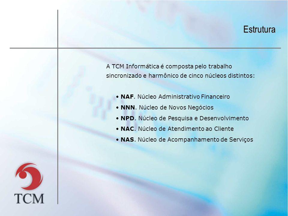 Estrutura A TCM Informática é composta pelo trabalho sincronizado e harmônico de cinco núcleos distintos: NAF.