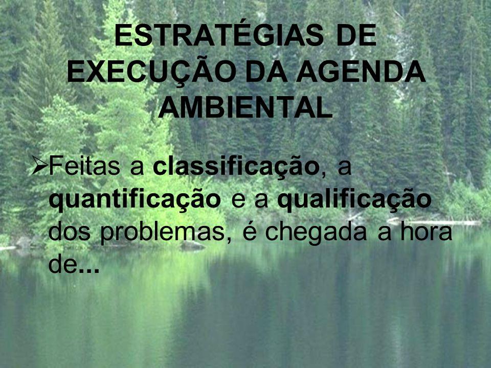 ESTRATÉGIAS DE EXECUÇÃO DA AGENDA AMBIENTAL Feitas a classificação, a quantificação e a qualificação dos problemas, é chegada a hora de...