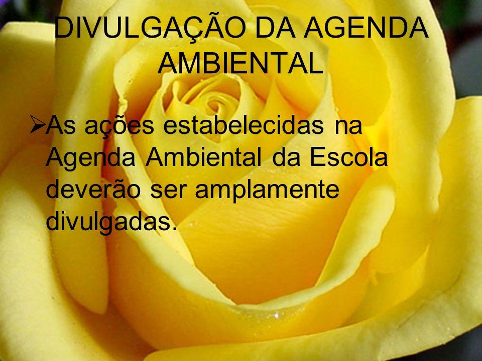 DIVULGAÇÃO DA AGENDA AMBIENTAL As ações estabelecidas na Agenda Ambiental da Escola deverão ser amplamente divulgadas.