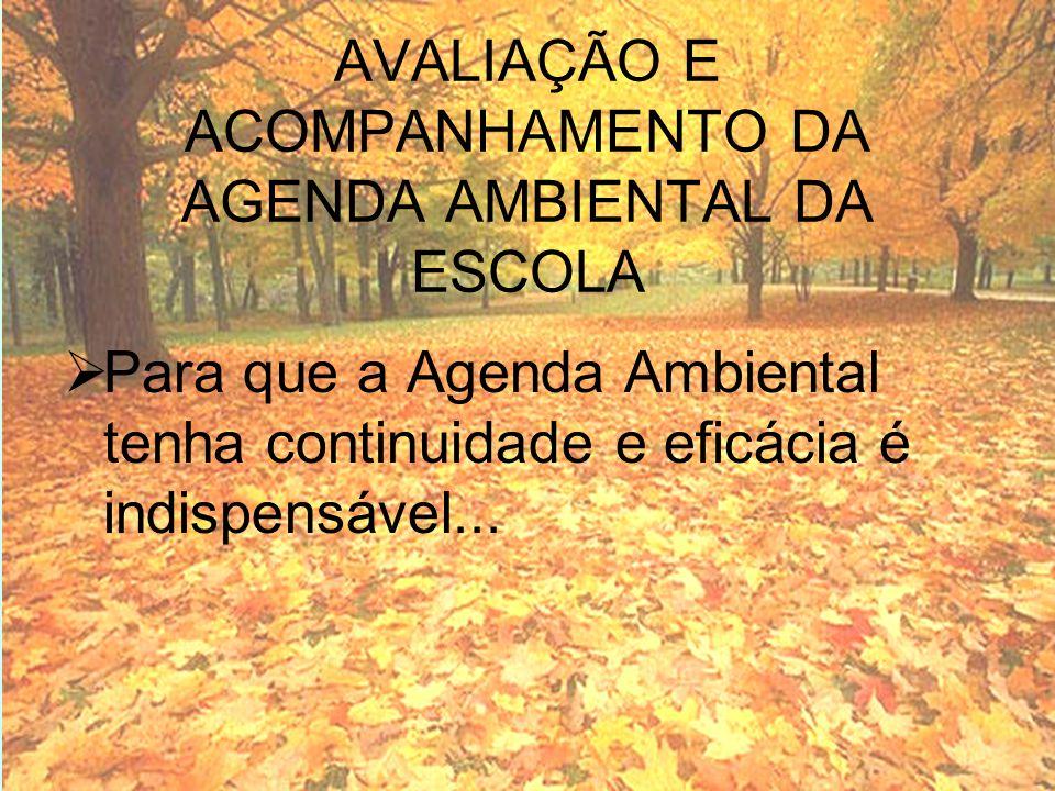 AVALIAÇÃO E ACOMPANHAMENTO DA AGENDA AMBIENTAL DA ESCOLA Para que a Agenda Ambiental tenha continuidade e eficácia é indispensável...