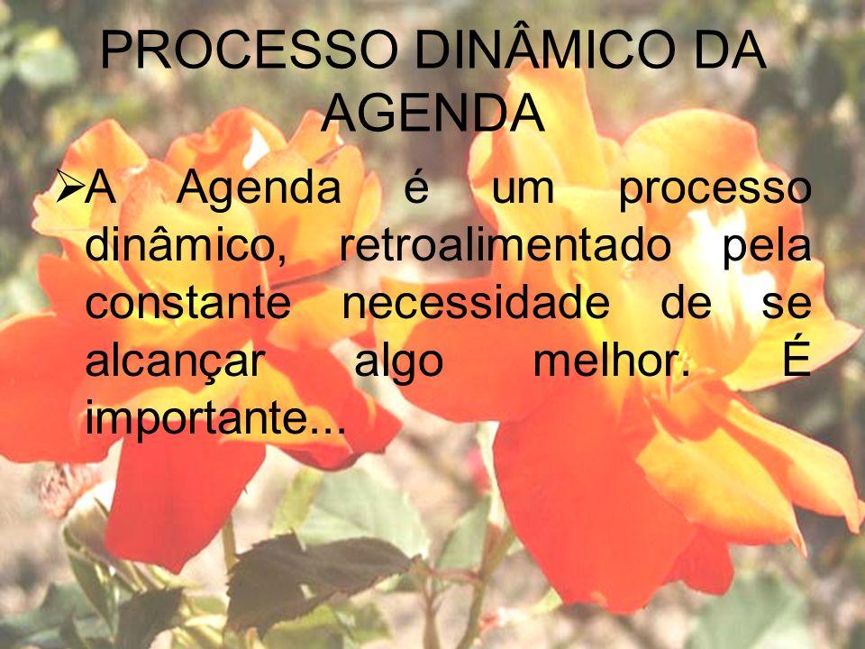 PROCESSO DINÂMICO DA AGENDA A Agenda é um processo dinâmico, retroalimentado pela constante necessidade de se alcançar algo melhor.