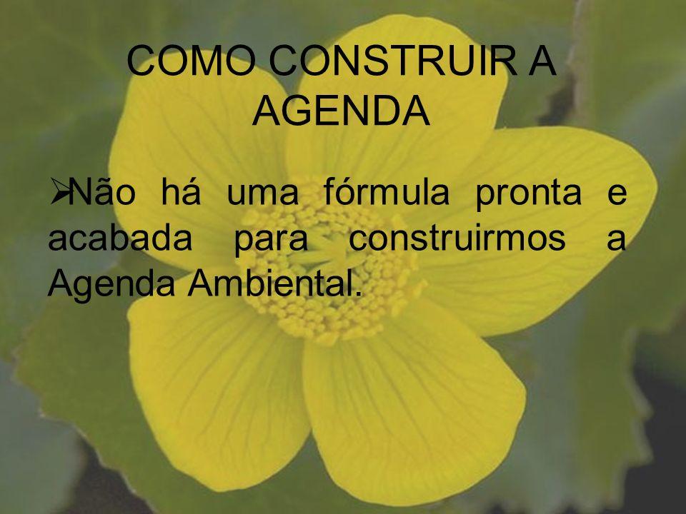 Não há uma fórmula pronta e acabada para construirmos a Agenda Ambiental. COMO CONSTRUIR A AGENDA