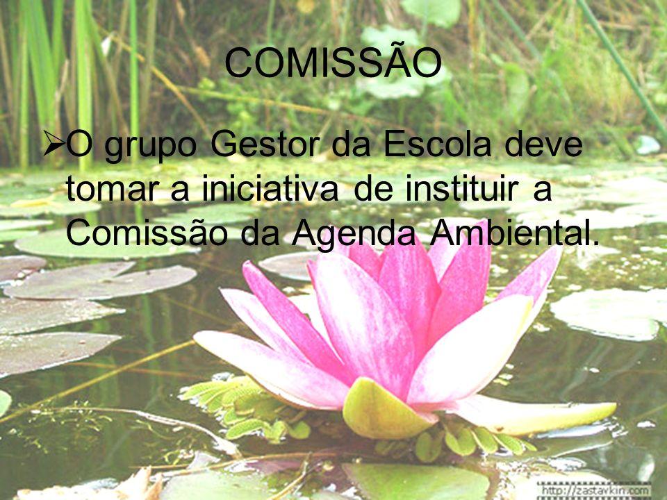 COMISSÃO O grupo Gestor da Escola deve tomar a iniciativa de instituir a Comissão da Agenda Ambiental.