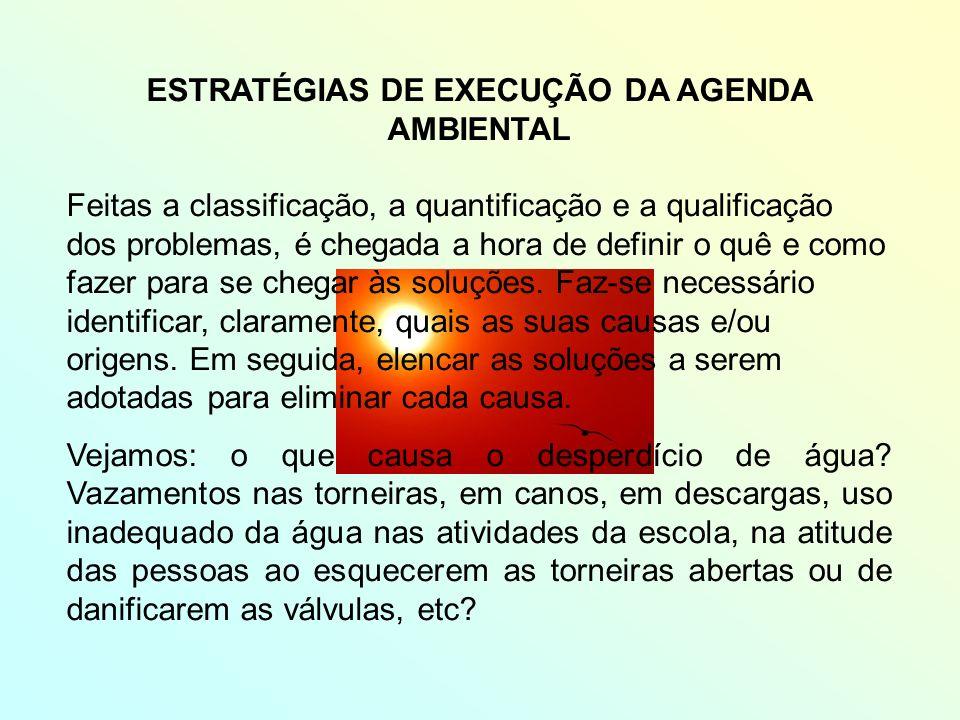 ESTRATÉGIAS DE EXECUÇÃO DA AGENDA AMBIENTAL Feitas a classificação, a quantificação e a qualificação dos problemas, é chegada a hora de definir o quê