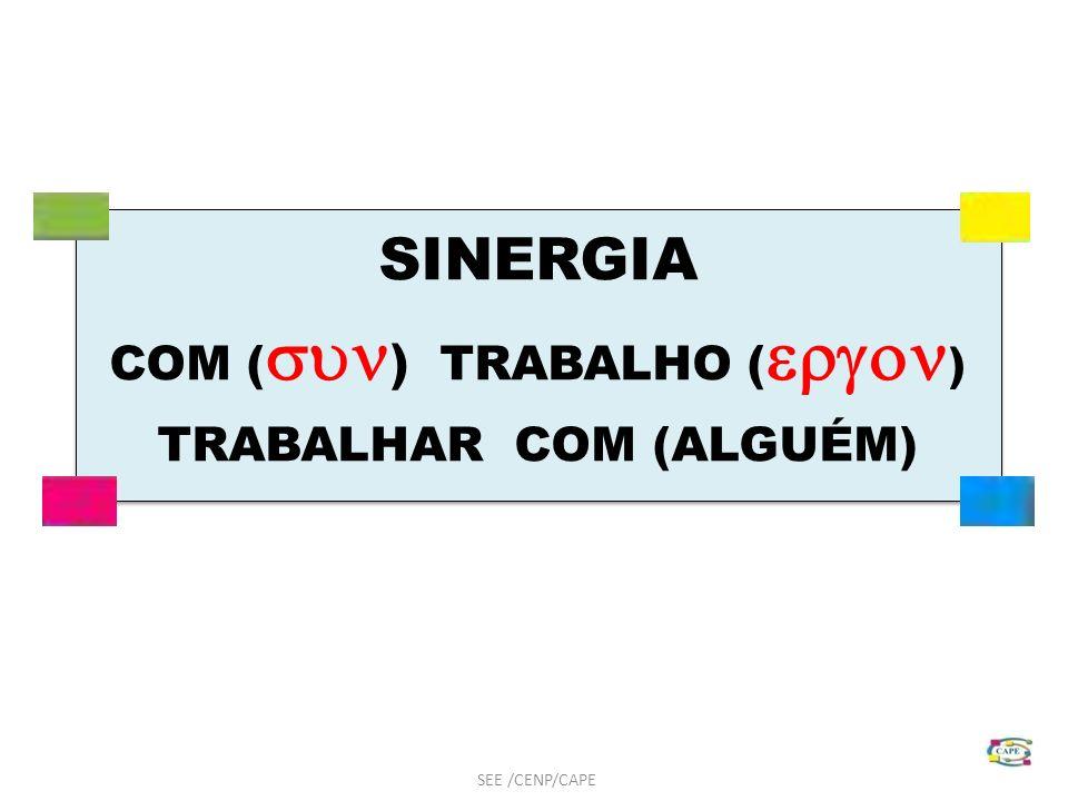 SINERGIA COM ( ) TRABALHO ( ) TRABALHAR COM (ALGUÉM) SINERGIA COM ( ) TRABALHO ( ) TRABALHAR COM (ALGUÉM) SEE /CENP/CAPE