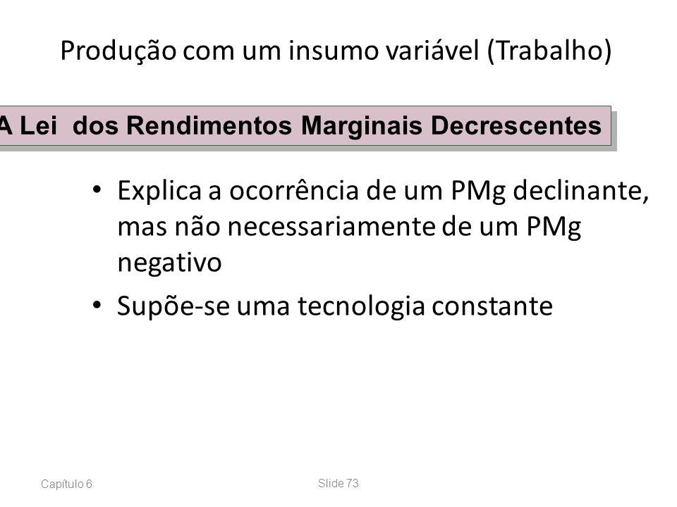 Capítulo 6Slide 73 Explica a ocorrência de um PMg declinante, mas não necessariamente de um PMg negativo Supõe-se uma tecnologia constante A Lei dos R