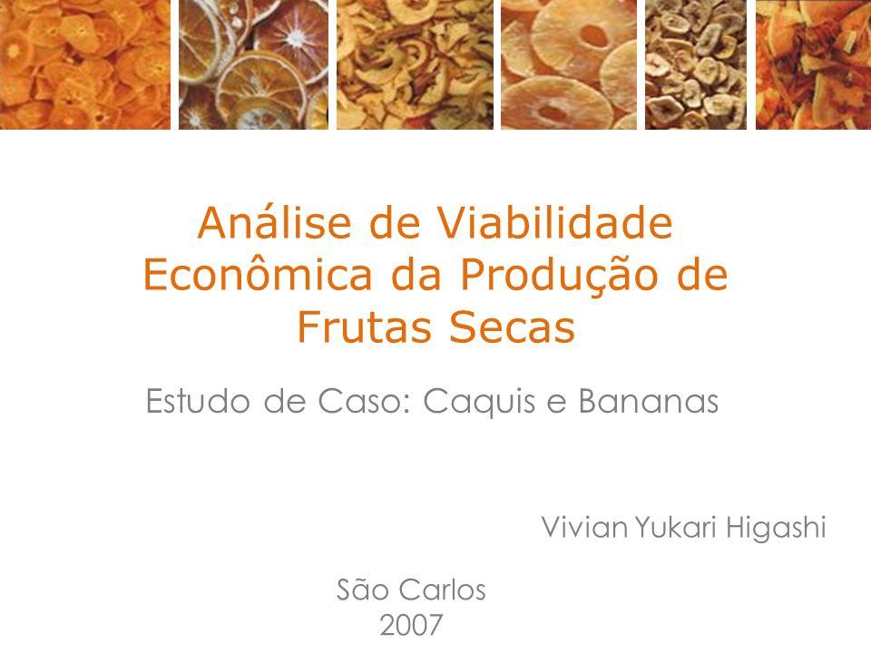 Análise de Viabilidade Econômica da Produção de Frutas Secas Estudo de Caso: Caquis e Bananas Vivian Yukari Higashi São Carlos 2007