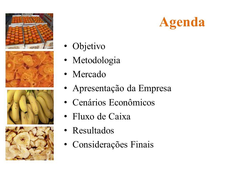 Agenda Objetivo Metodologia Mercado Apresentação da Empresa Cenários Econômicos Fluxo de Caixa Resultados Considerações Finais