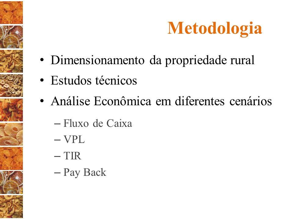 Metodologia Dimensionamento da propriedade rural Estudos técnicos Análise Econômica em diferentes cenários – Fluxo de Caixa – VPL – TIR – Pay Back