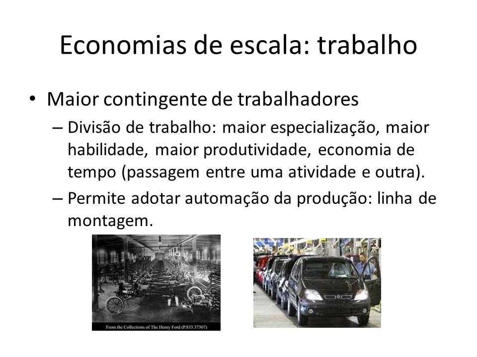 Economias de escala: trabalho Maior contingente de trabalhadores – Divisão de trabalho: maior especialização, maior habilidade, maior produtividade, economia de tempo (passagem entre uma atividade e outra).