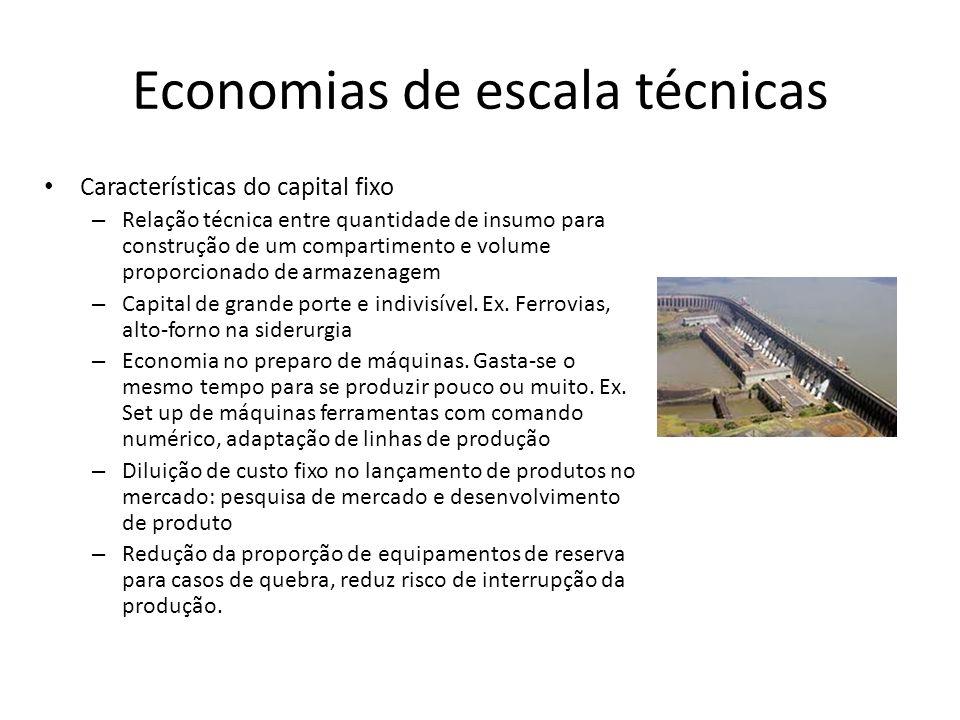 Economias de escala técnicas Características do capital fixo – Relação técnica entre quantidade de insumo para construção de um compartimento e volume proporcionado de armazenagem – Capital de grande porte e indivisível.
