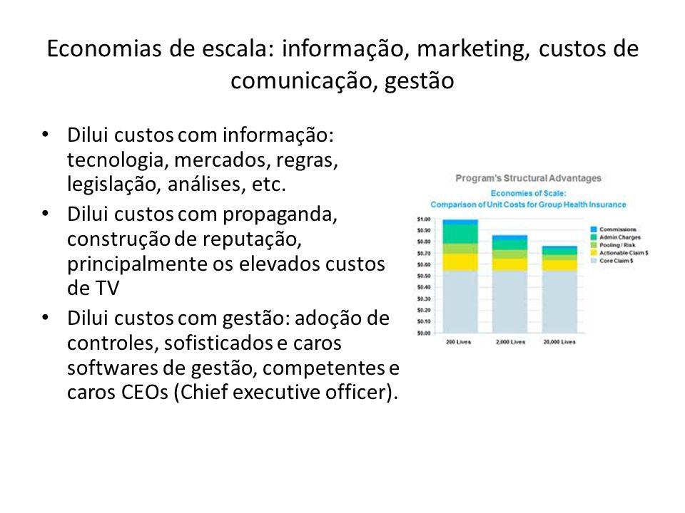 Economias de escala: informação, marketing, custos de comunicação, gestão Dilui custos com informação: tecnologia, mercados, regras, legislação, análi