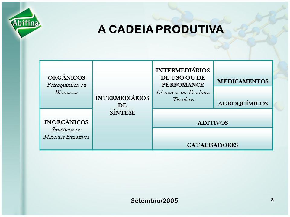 Setembro/2005 8 A CADEIA PRODUTIVA ORGÂNICOS Petroquímica ou Biomassa INTERMEDIÁRIOS DE SÍNTESE INTERMEDIÁRIOS DE USO OU DE PERFOMANCE Fármacos ou Pro