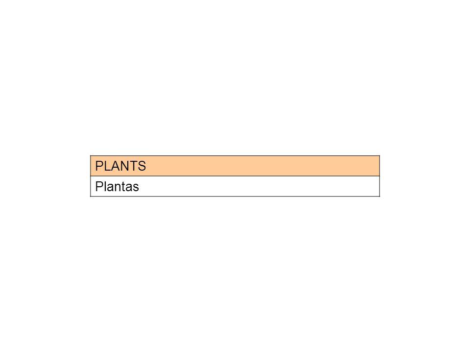 PLANTS Plantas