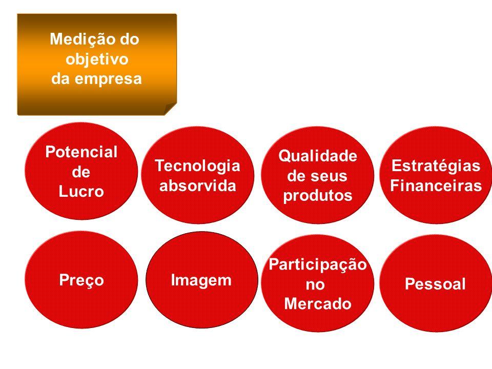 Medição do objetivo da empresa Potencial de Lucro Tecnologia absorvida Qualidade de seus produtos Estratégias Financeiras Preço Imagem Participação no