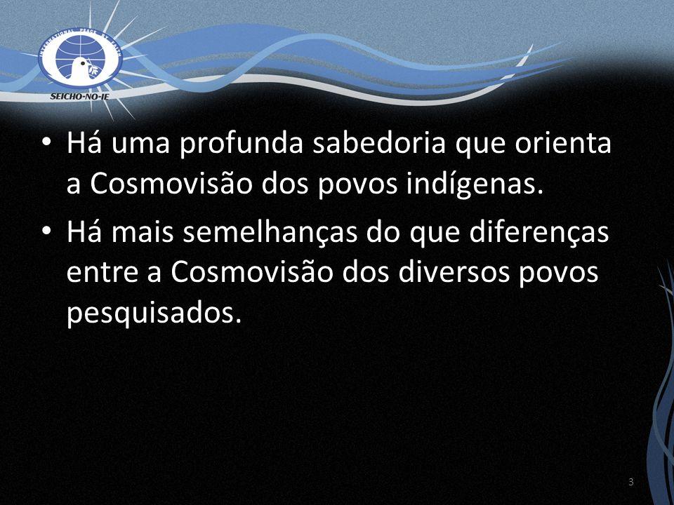 Há uma profunda sabedoria que orienta a Cosmovisão dos povos indígenas. Há mais semelhanças do que diferenças entre a Cosmovisão dos diversos povos pe