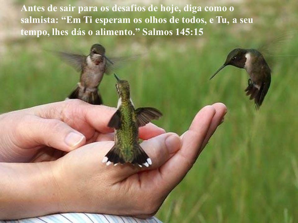 Antes de sair para os desafios de hoje, diga como o salmista: Em Ti esperam os olhos de todos, e Tu, a seu tempo, lhes dás o alimento. Salmos 145:15