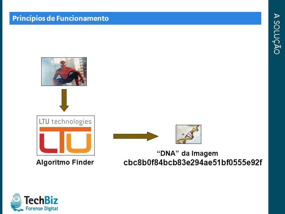 A SOLUÇÃO Princípios de Funcionamento Algoritmo Finder DNA da Imagem cbc8b0f84bcb83e294ae51bf0555e92f