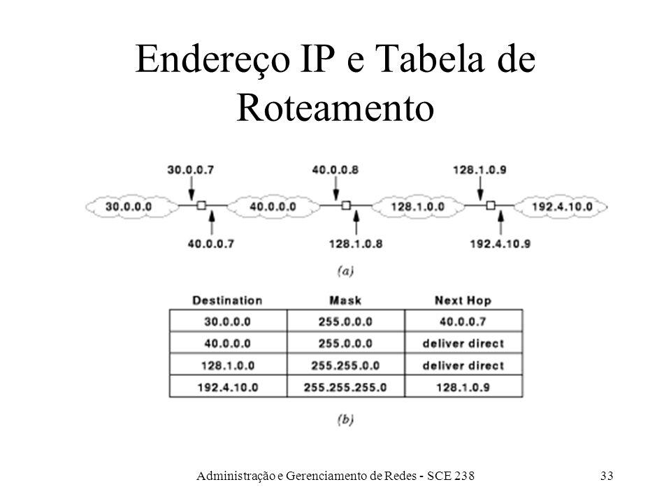 Administração e Gerenciamento de Redes - SCE 23833 Endereço IP e Tabela de Roteamento