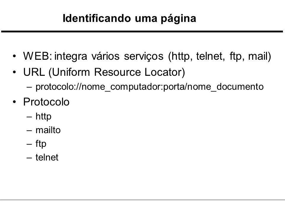 Identificando uma página WEB: integra vários serviços (http, telnet, ftp, mail) URL (Uniform Resource Locator) –protocolo://nome_computador:porta/nome_documento Protocolo –http –mailto –ftp –telnet