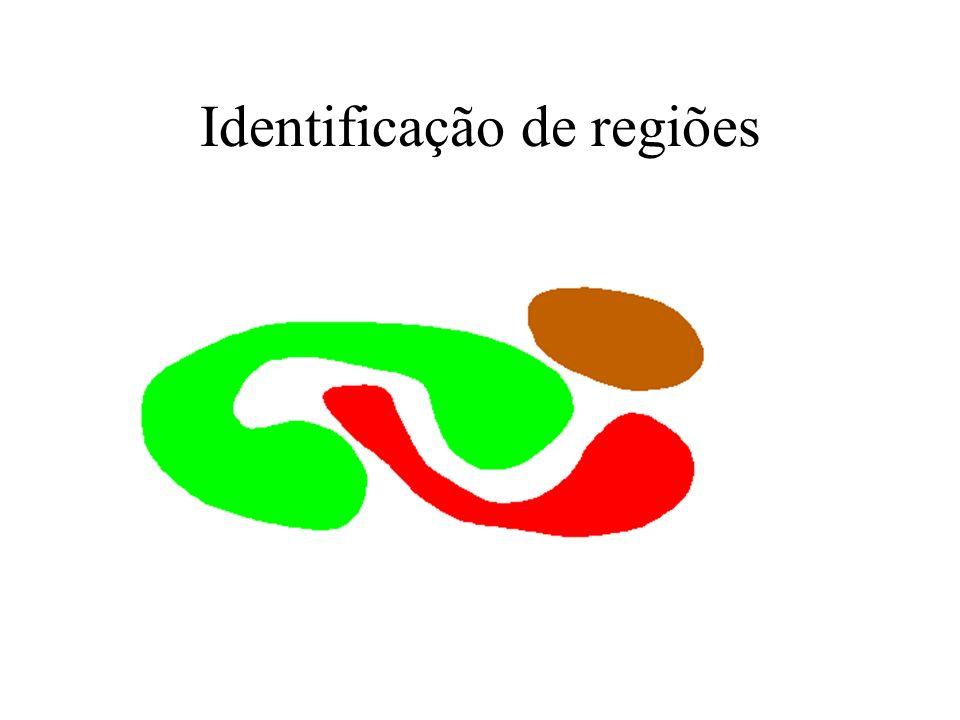 Identificação de regiões É preciso identificar a região p/ descrevê-la. Como ? –Rotulação (connected component labelling) input: imagem segmentada def