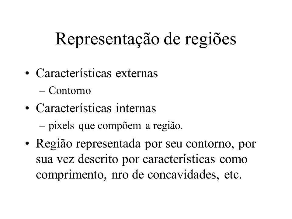 Tópicos importantes Identificação da Região Descrição e representação baseadas em contornos Descrição e representação baseadas em regiões Descritores