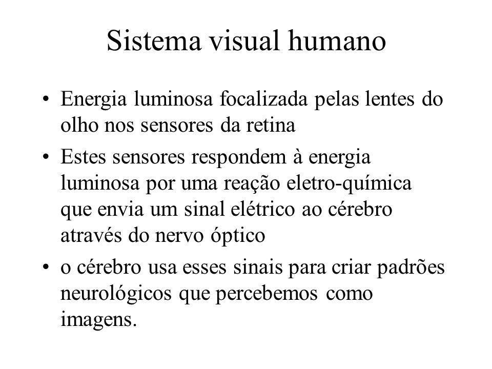 Percepção Visual Humana Envolve componentes fisiológicos e psicológicos Por que estudá-lo.