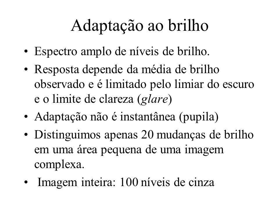 Resolução Topo, Esquerda (sentido horário): Original, 1/4, 1/8, 1/16 da original