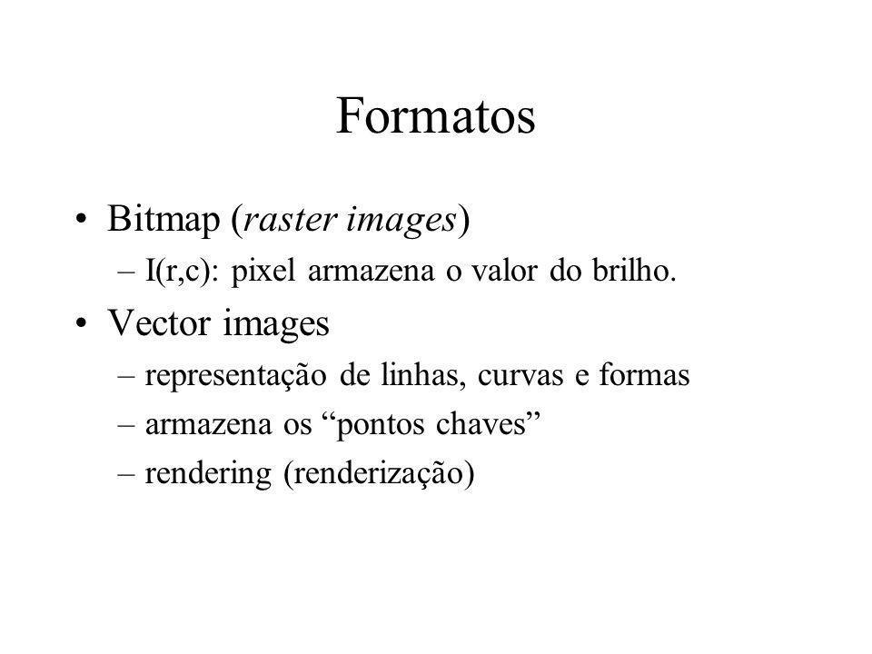 Formatos de arquivos para imagens digitais Diversos formatos –requisitos diferentes, vários tipos de imagens –razões de mercado –software proprietário –falta de coordenação da indústria de imagens Computação Gráfica –imagens bitmap e imagens vetores (vector images)