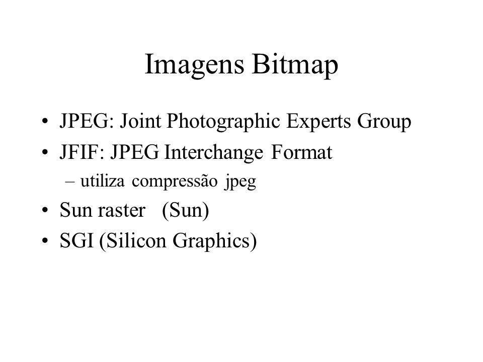 Imagens Bitmap BIN (raw image, sem cabeçalho) PPM (raw data + cabeçalho simples) –PBM(binário), PGM(grey-scale), PNM (ambos) TIFF (Tagged Image File format) 24 bpp + compressão (LZW, RLE, JPEG) GIF (Graphics Interchange Format) 8 bpp + compressão LZW.