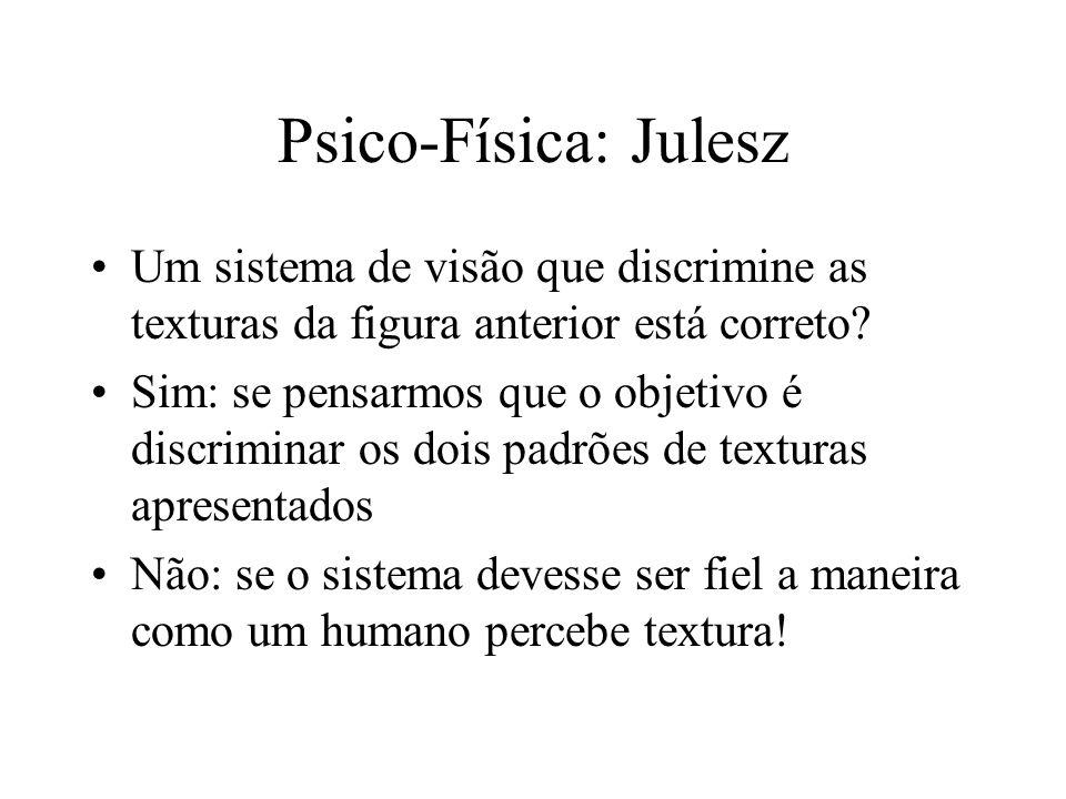 Psico-Física: Julesz