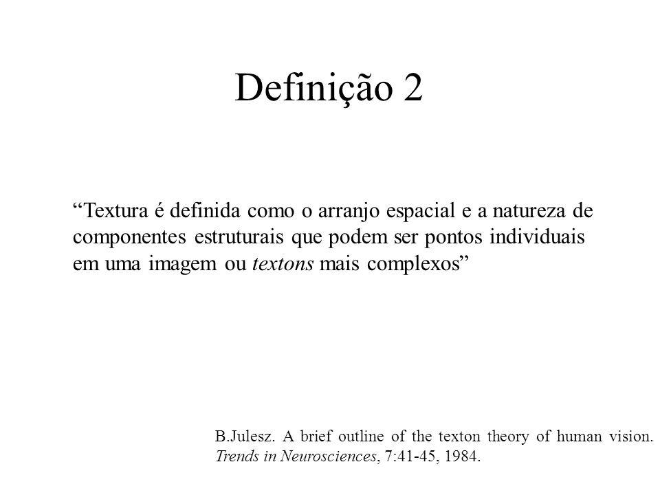 Definição 2 Textura é definida como o arranjo espacial e a natureza de componentes estruturais que podem ser pontos individuais em uma imagem ou textons mais complexos B.Julesz.