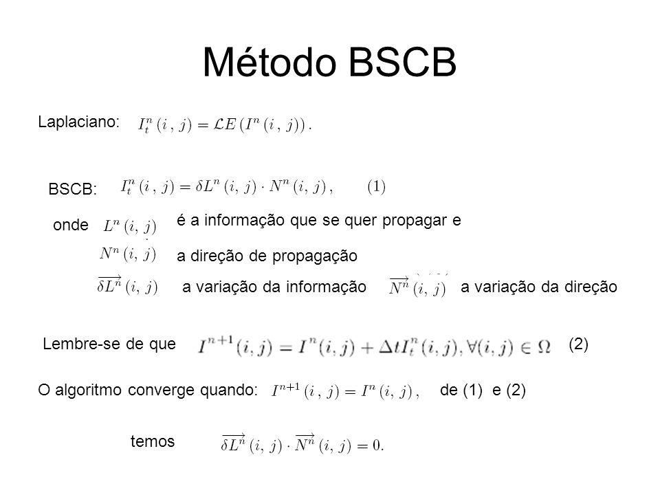 Método BSCB O algoritmo converge quando: Laplaciano: BSCB: onde é a informação que se quer propagar e a direção de propagação a variação da informaçãoa variação da direção Lembre-se de que(2) de (1) e (2) temos