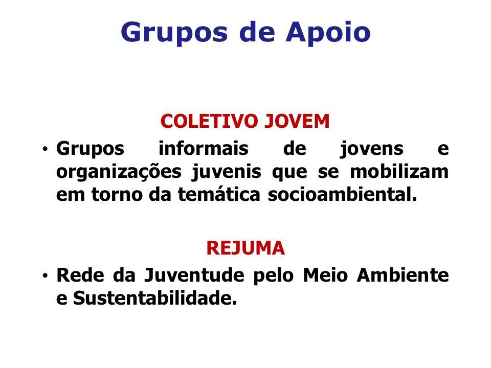 Grupos de Apoio COLETIVO JOVEM Grupos informais de jovens e organizações juvenis que se mobilizam em torno da temática socioambiental. REJUMA Rede da