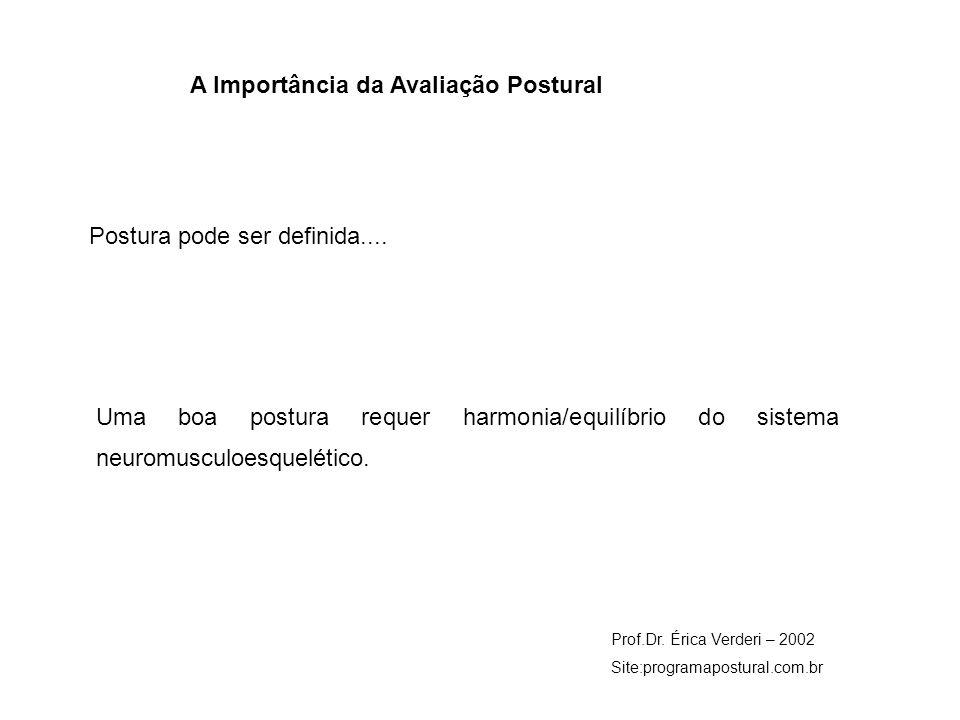 A Importância da Avaliação Postural Prof.Dr. Érica Verderi – 2002 Site:programapostural.com.br Postura pode ser definida.... Uma boa postura requer ha