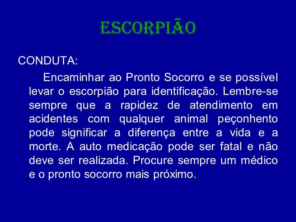 ESCORPIÃO CONDUTA: Encaminhar ao Pronto Socorro e se possível levar o escorpião para identificação. Lembre-se sempre que a rapidez de atendimento em a