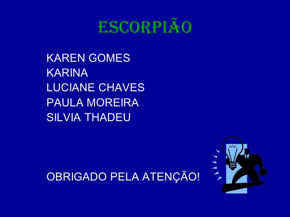 ESCORPIÃO KAREN GOMES KARINA LUCIANE CHAVES PAULA MOREIRA SILVIA THADEU OBRIGADO PELA ATENÇÃO!