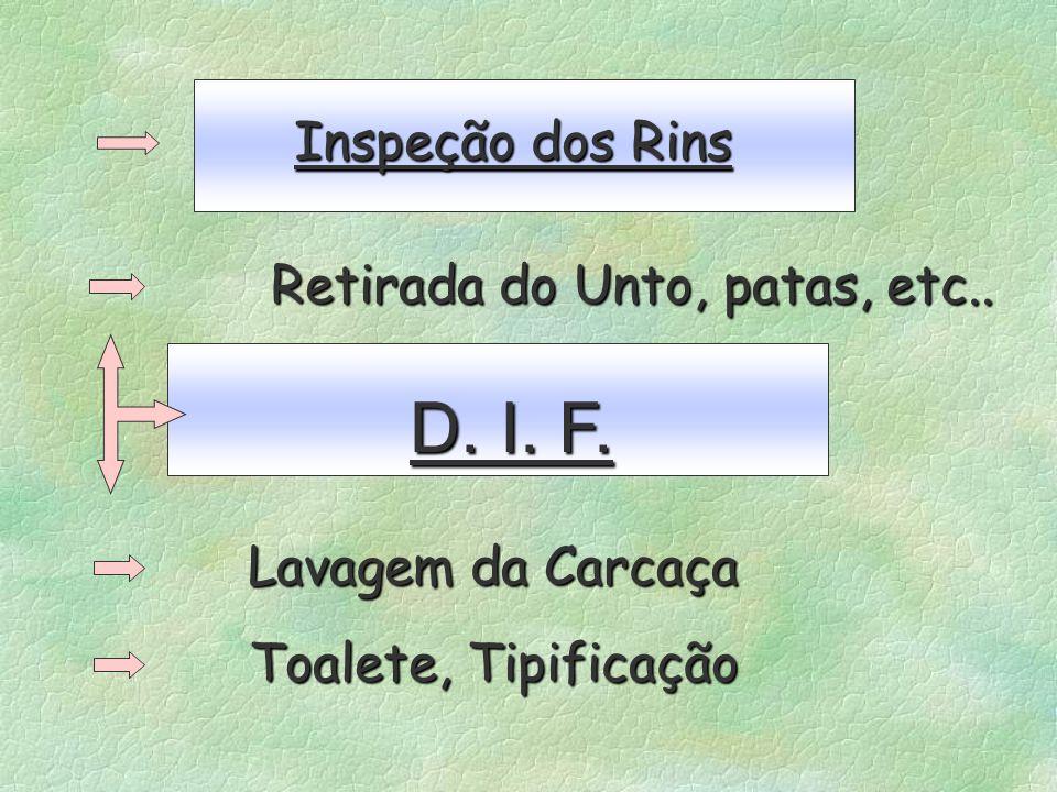 Inspeção dos Rins Inspeção dos Rins Retirada do Unto, patas, etc.. D. I. F. D. I. F. Lavagem da Carcaça Lavagem da Carcaça Toalete, Tipificação