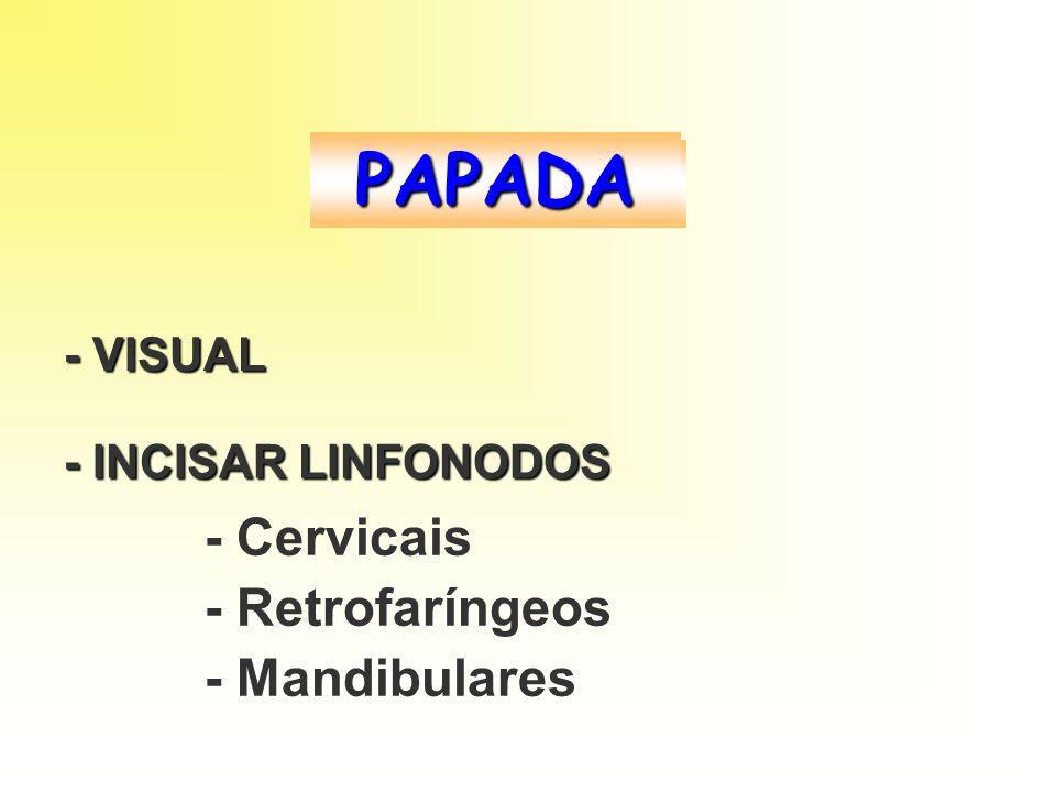 PAPADA - VISUAL - INCISAR LINFONODOS - Cervicais - Retrofaríngeos - Mandibulares