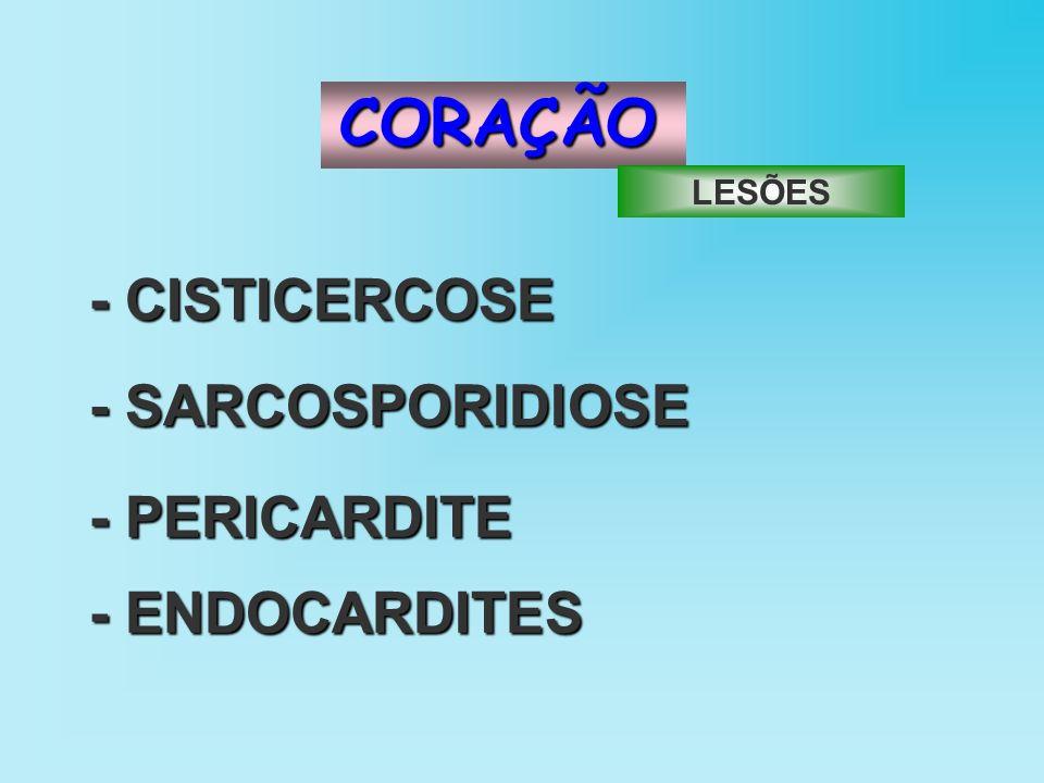 CORAÇÃO - CISTICERCOSE -SARCOSPORIDIOSE - SARCOSPORIDIOSE - ENDOCARDITES - PERICARDITE LESÕES
