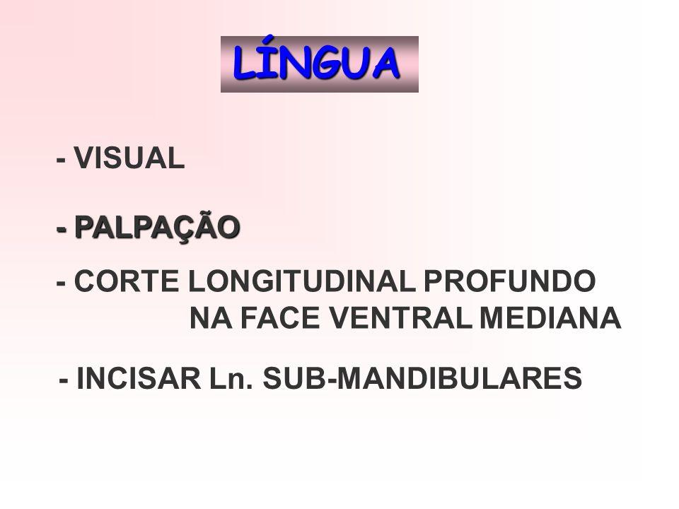 LÍNGUA - VISUAL - PALPAÇÃO - CORTE LONGITUDINAL PROFUNDO NA FACE VENTRAL MEDIANA - INCISAR Ln. SUB-MANDIBULARES