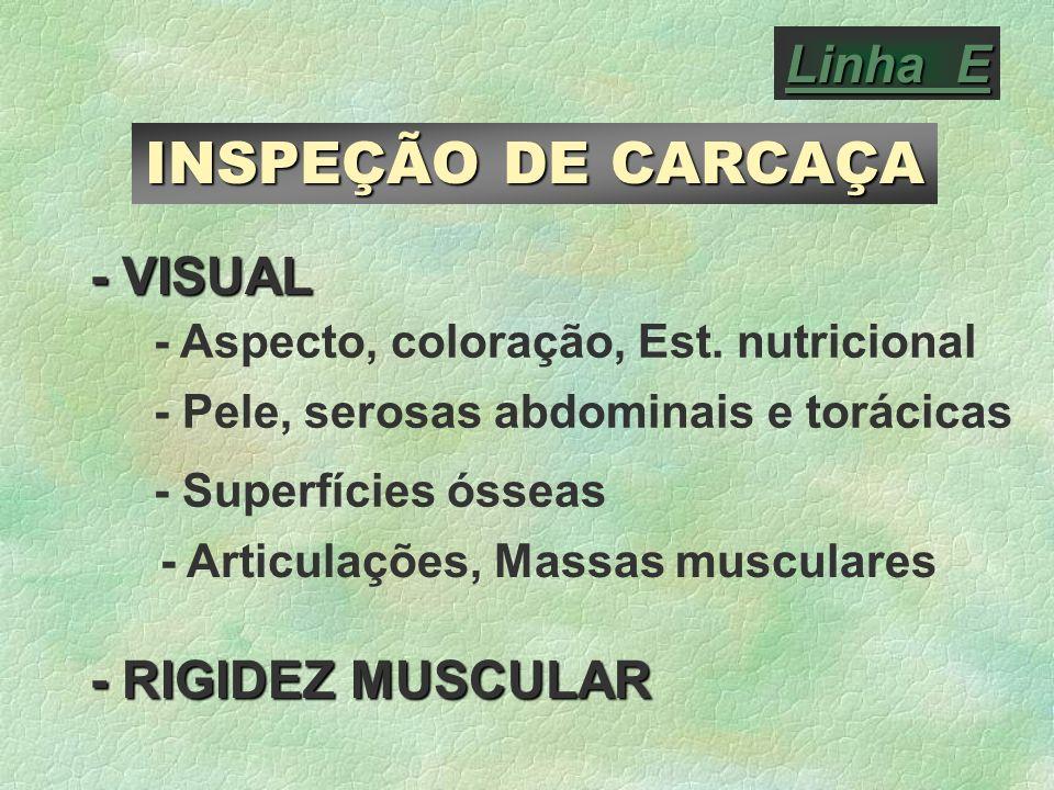 Linha E INSPEÇÃO DE CARCAÇA - VISUAL - RIGIDEZ MUSCULAR - Aspecto, coloração, Est. nutricional - Pele, serosas abdominais e torácicas - Superfícies ós