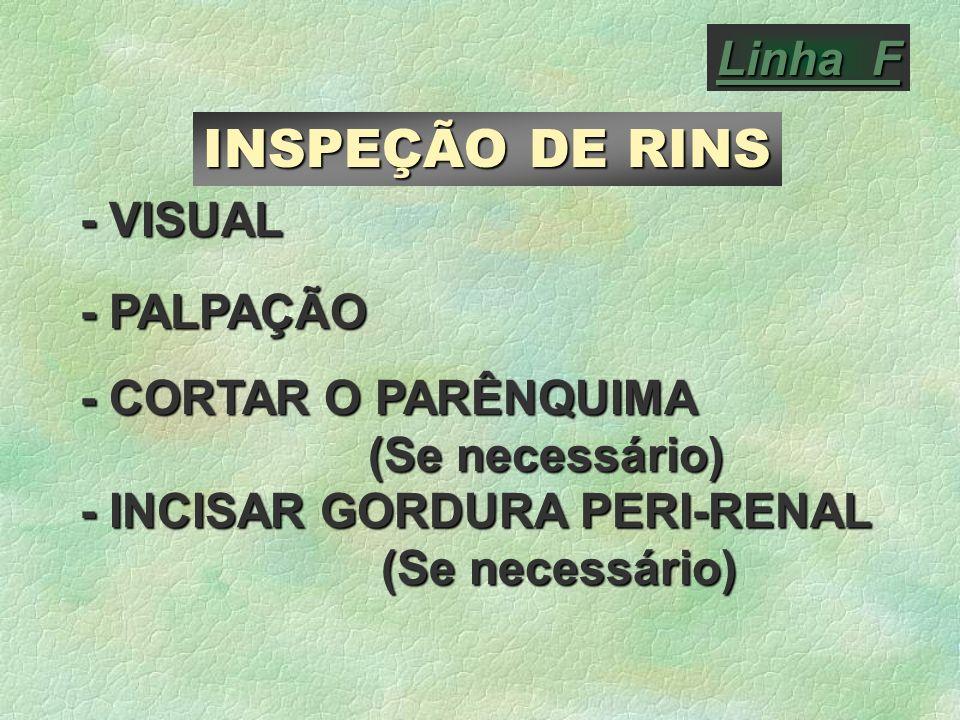 Linha F INSPEÇÃO DE RINS - VISUAL - PALPAÇÃO - CORTAR O PARÊNQUIMA (Se necessário) - INCISAR GORDURA PERI-RENAL (Se necessário) (Se necessário)