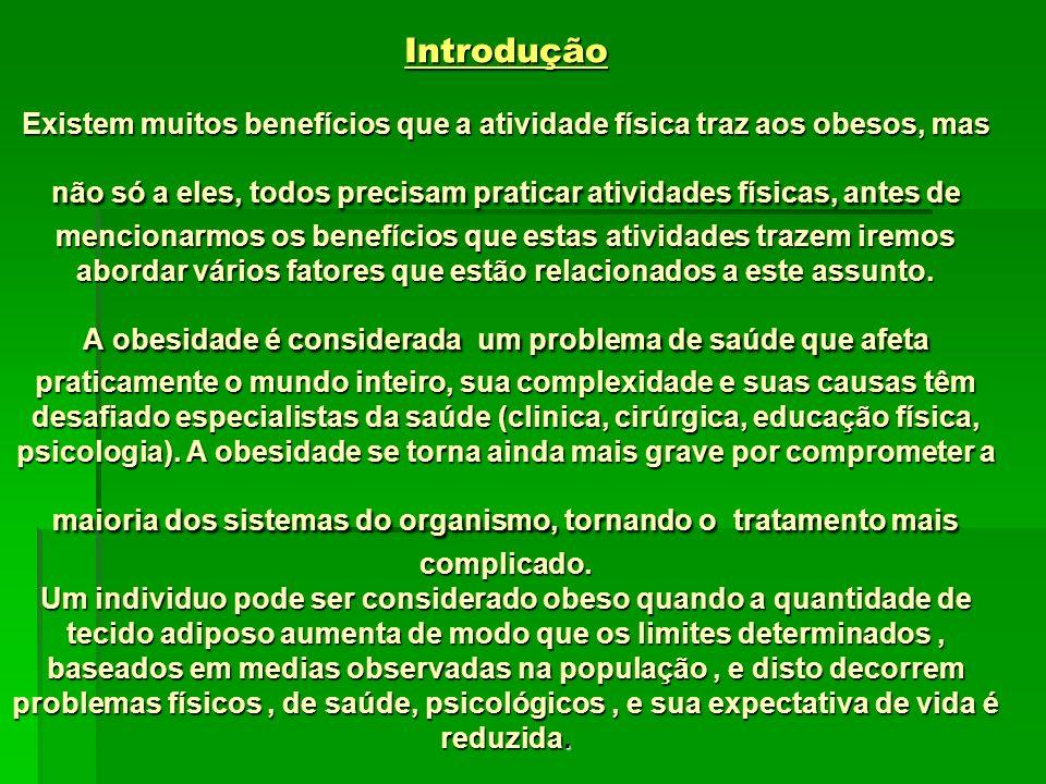 PONTIFICIA UNIVERSIDADE CATÓLICA DO RIO GRANDE DO SUL FACULDADE DE FILOSOFIA CIENCIAS E LETRAS-FAFIUR CURSO EDUCAÇÃO FÍSICA Atividades Físicas para At