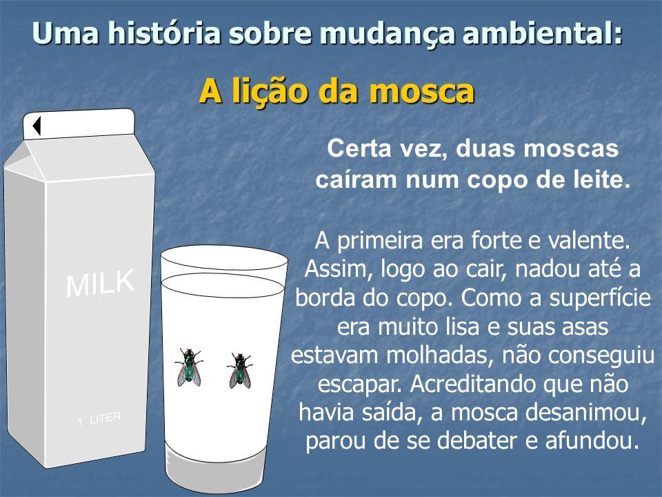 Uma história sobre mudança ambiental: A lição da mosca Certa vez, duas moscas caíram num copo de leite.